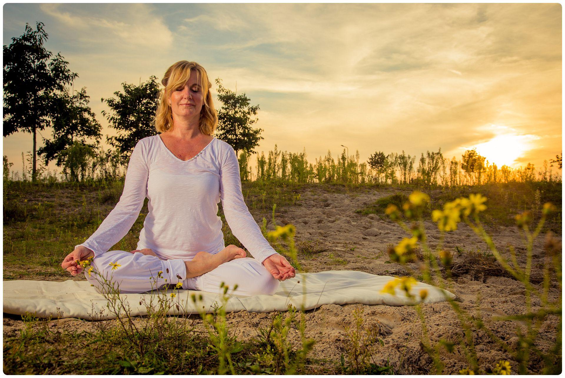 Vipassana / Mindfulness